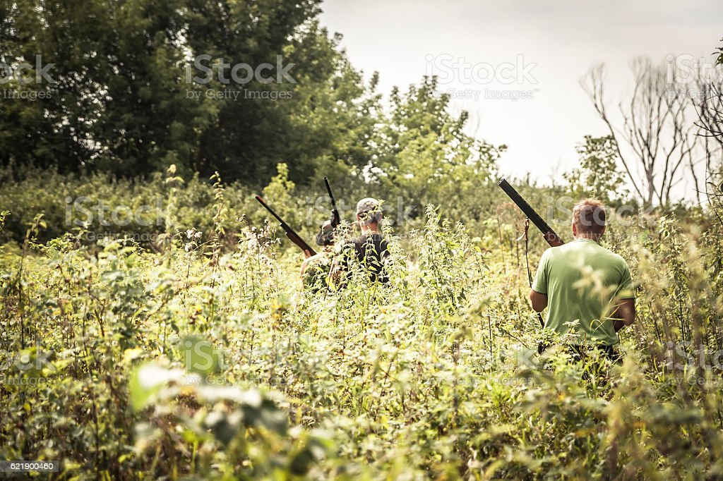 Hunters breaking through bushes during hunting season in summer day stock photo