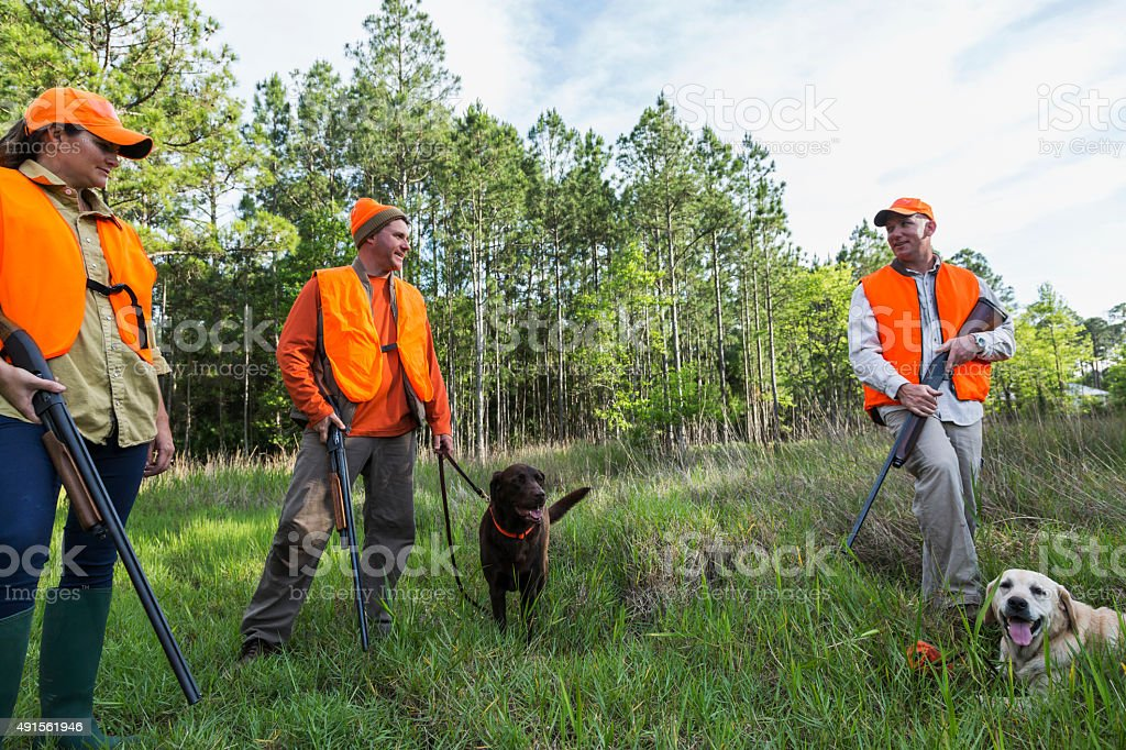 Hunters with hunting dogs stock photo