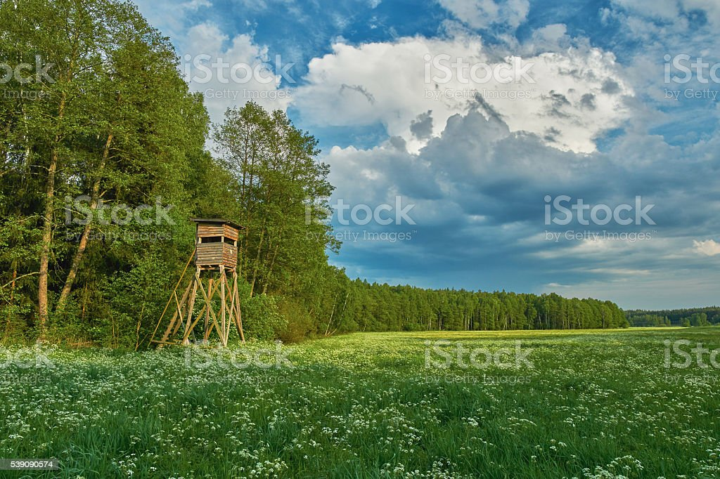 Hunting blind - hdr stock photo