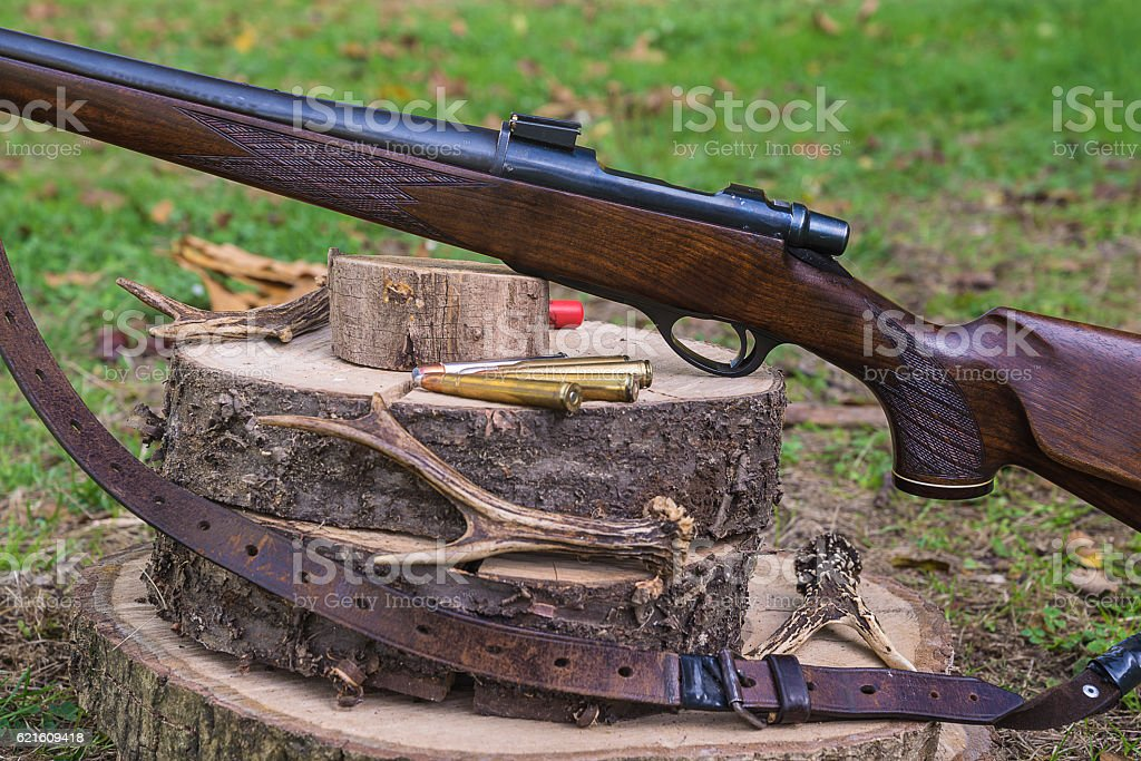 Hunting carabine composition stock photo