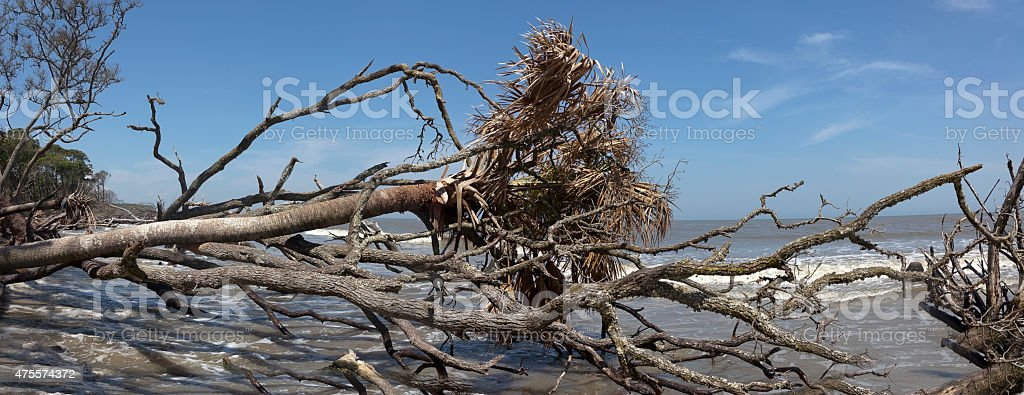 Hunting Island stock photo