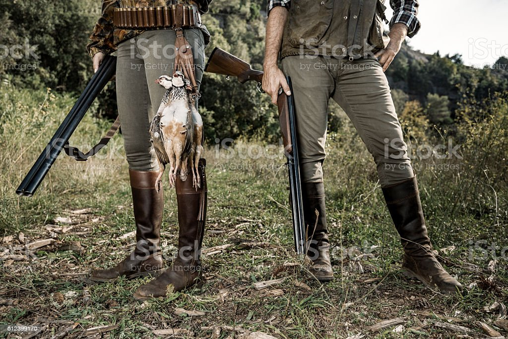 Hunting partridges stock photo