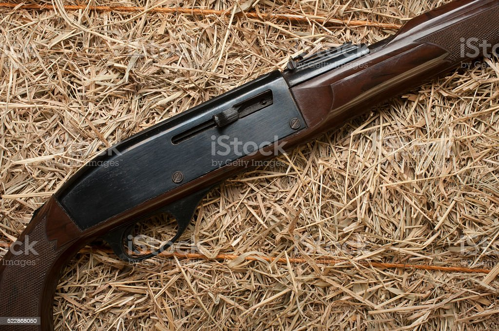 Hunting Rifle stock photo