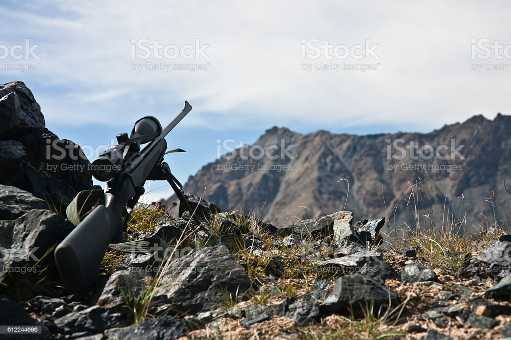 Hunting rifle with  telescopic sight,  bipod while hunting stock photo