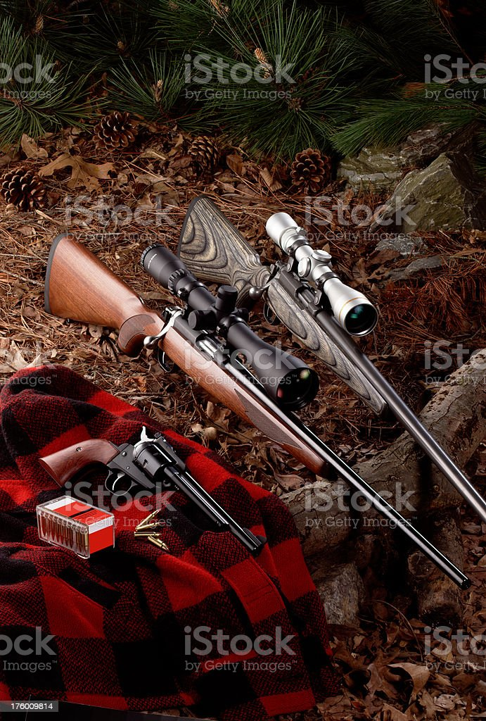 Hunting Rifles royalty-free stock photo