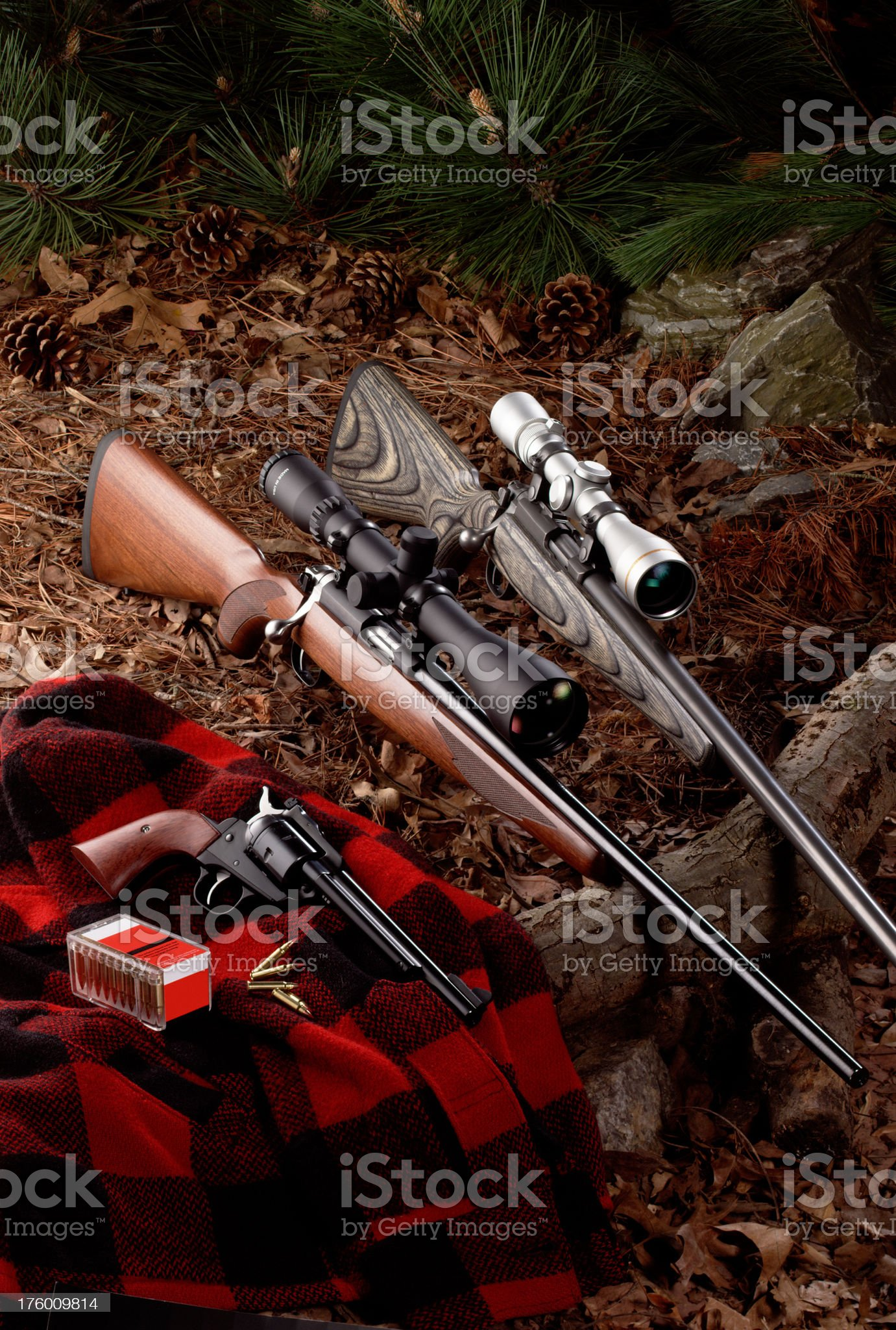 Hunting Rifles royalty-free stock photo