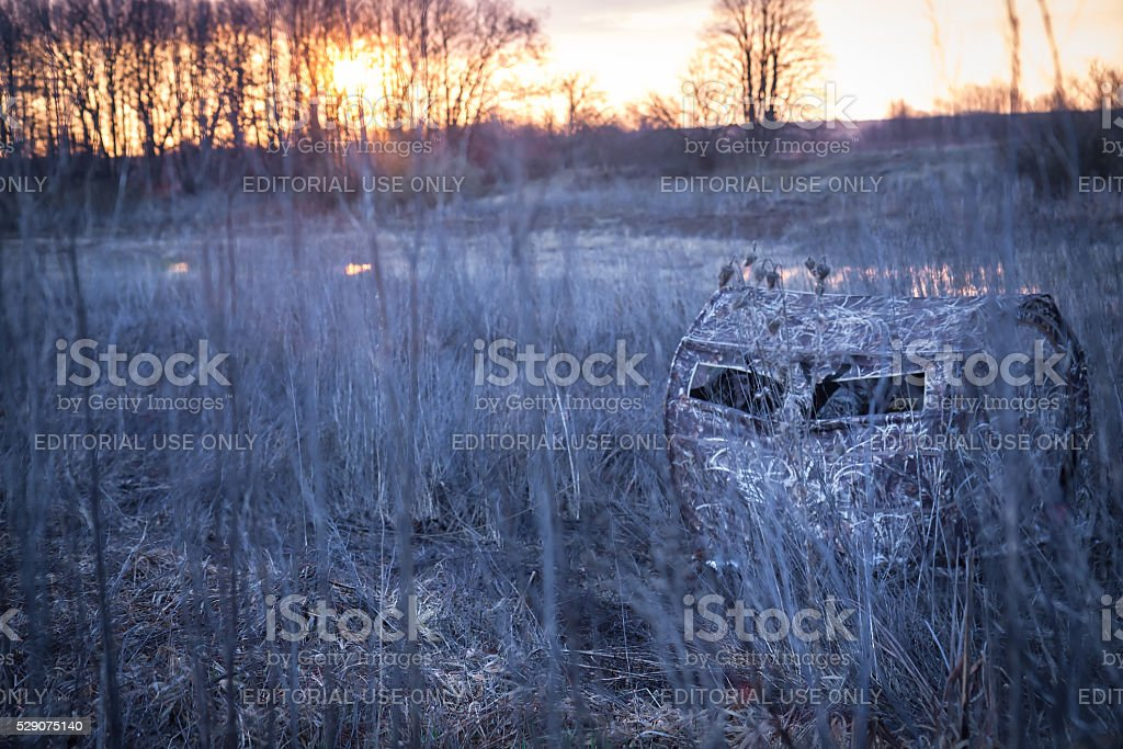 Hunting season in frosty morning in rural field stock photo