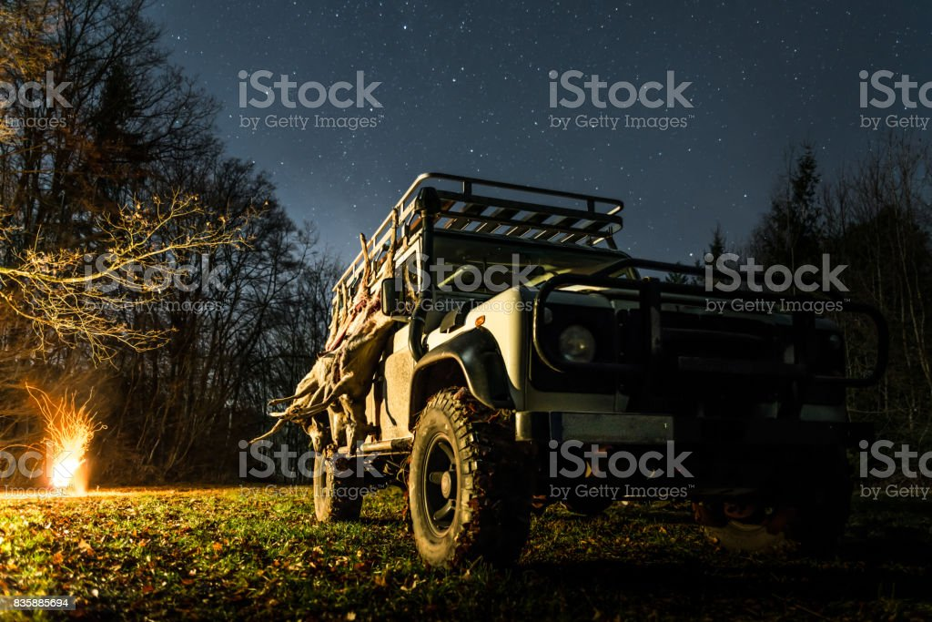 Hunting stretch with roe deer hanging on a off road vehicle stock photo