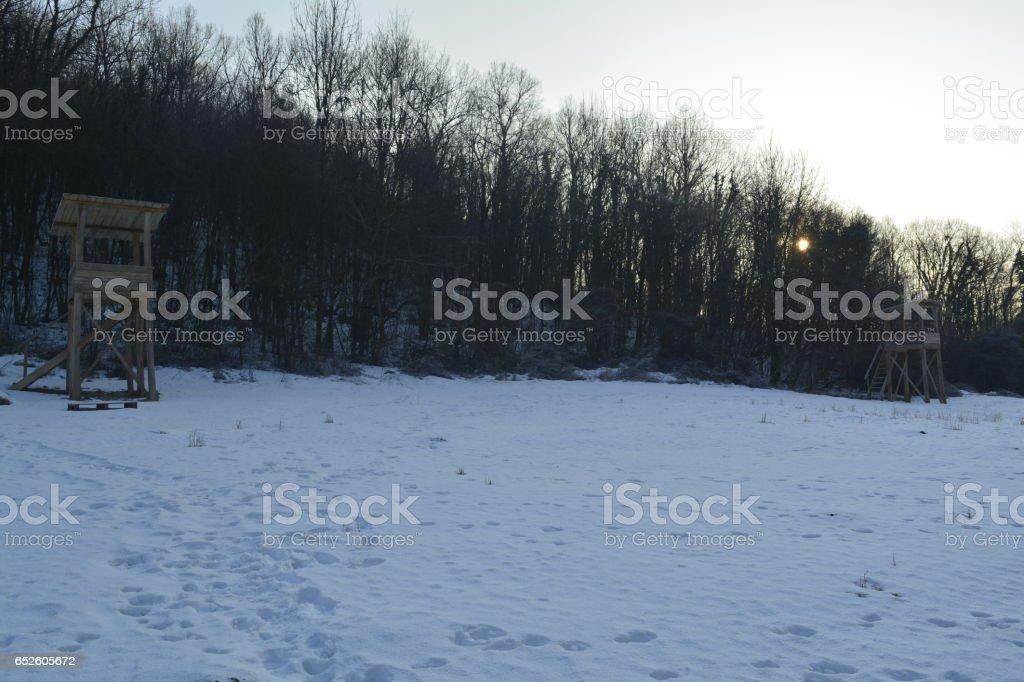 hunting watchtower stock photo