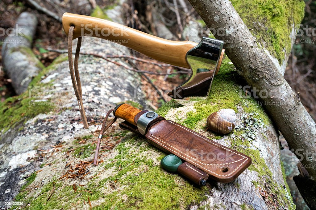 Hunting weapons in the forest stock photo