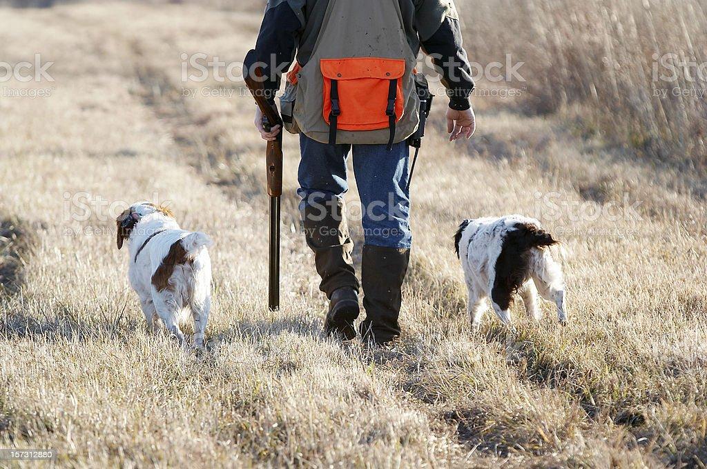 Hunting16 stock photo