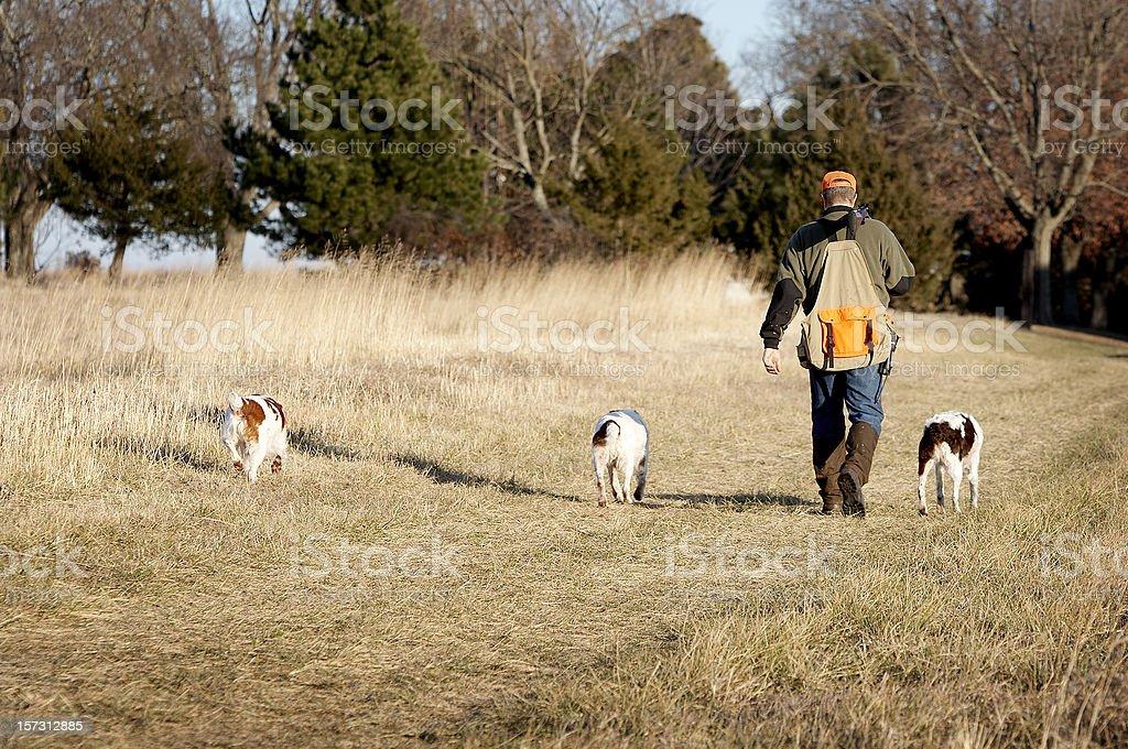 Hunting24 royalty-free stock photo