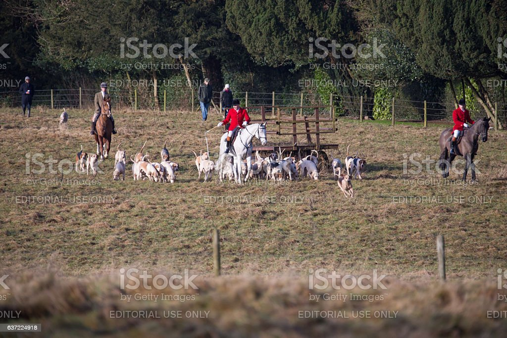 Huntmaster with the hounds at the annual Boxing day Hunt stock photo