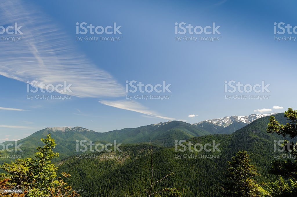 Huricane Ridge mountains and glaciers stock photo