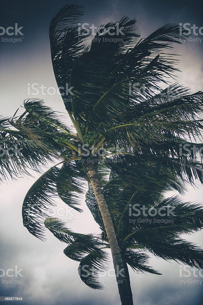Hurricane Approaches stock photo