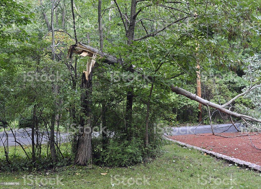 Hurricane Damage royalty-free stock photo