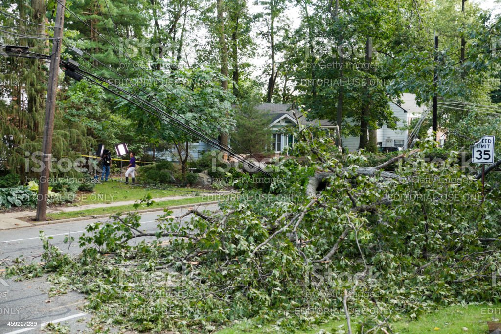 Hurricane Irene Fallen Tree Blocks Road and News Crew stock photo
