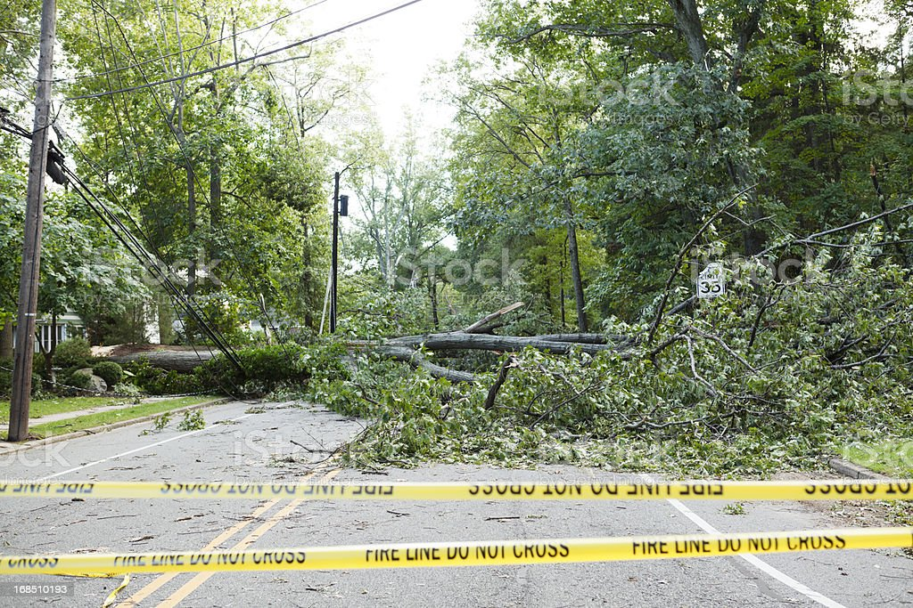 Hurricane Irene Fallen Tree Blocks Road stock photo