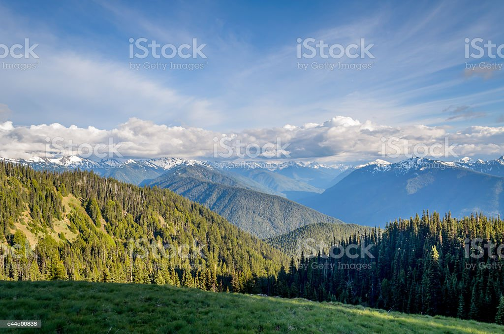 Hurricane Ridge, Olympic National Park stock photo