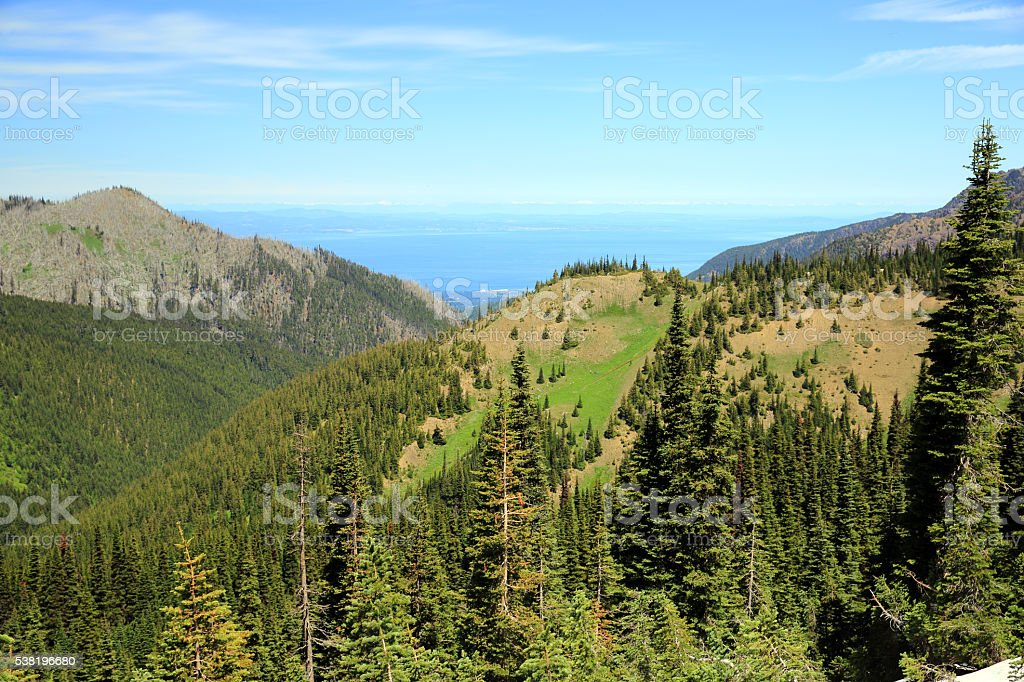Hurricane Ridge stock photo