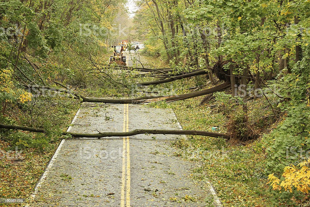 Hurricane Sandy Downed Trees stock photo