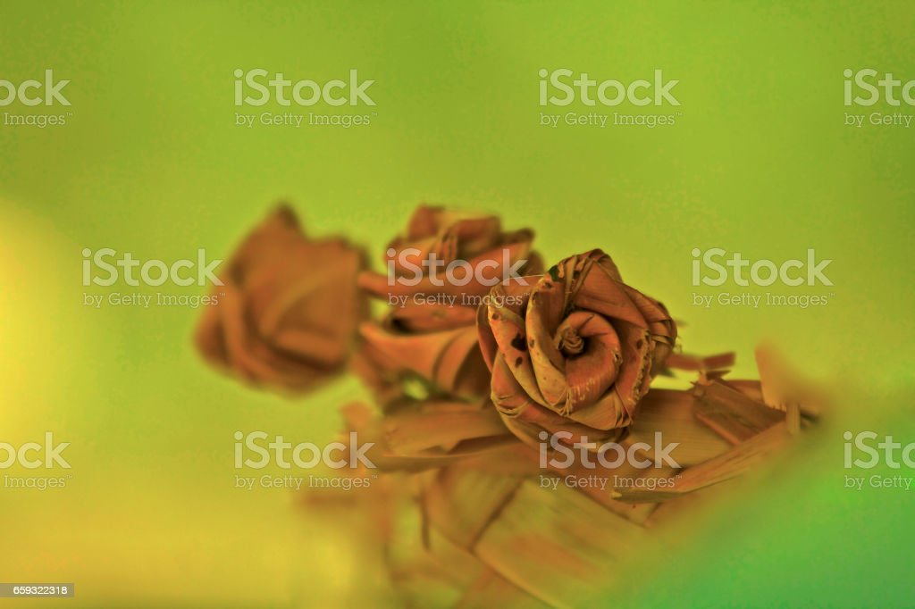 husk shaped into flowers stock photo