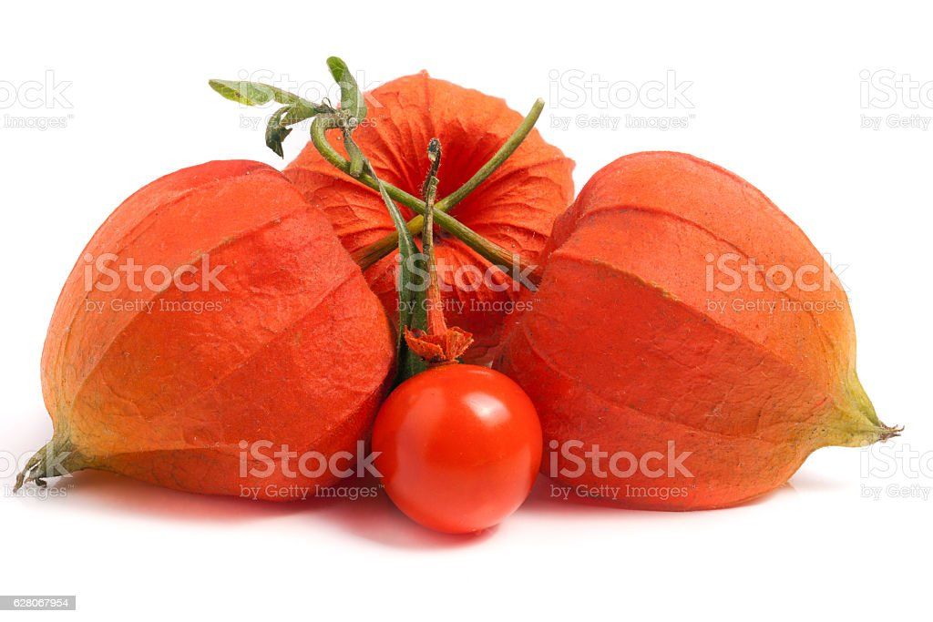 husk tomatoes or physalis with leaf isolated on white background stock photo