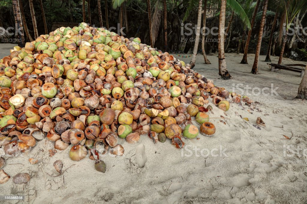 Husks of coconuts royalty-free stock photo
