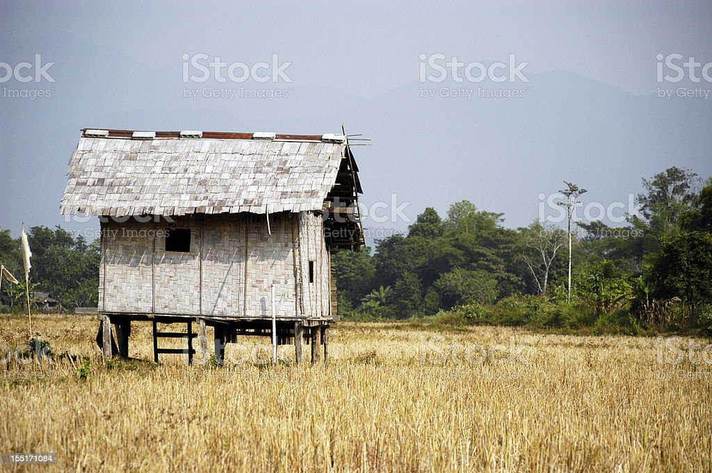 Hut in the field stock photo