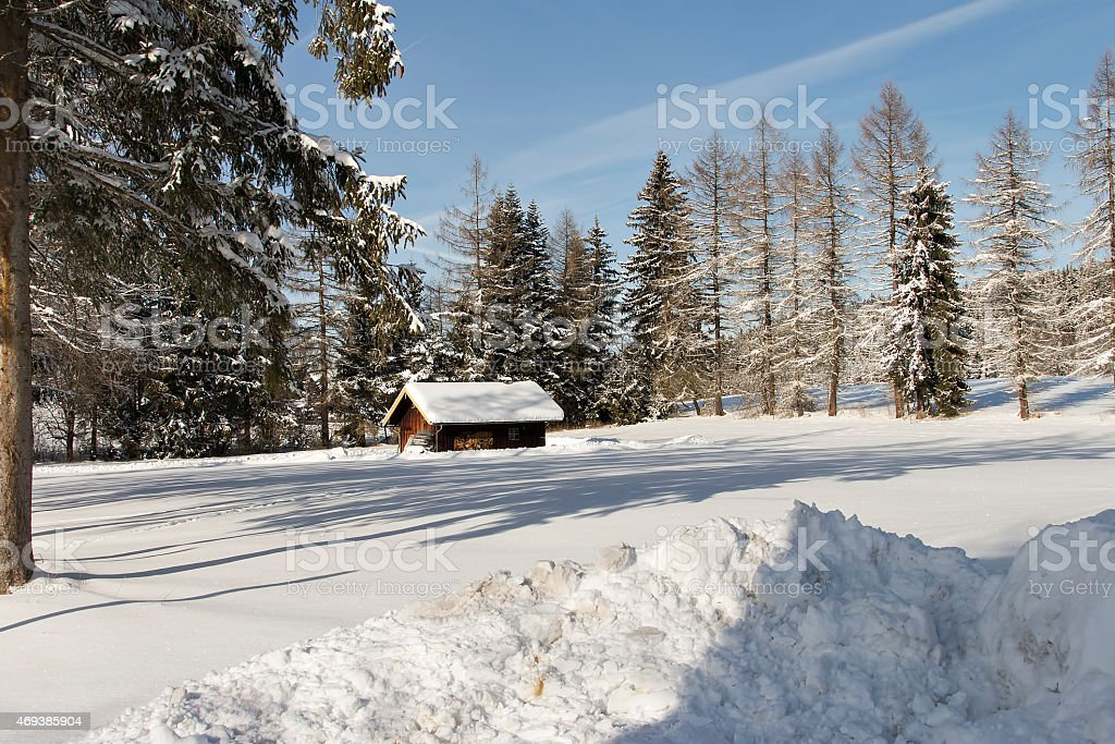 Hut in the forrest royalty-free stock photo