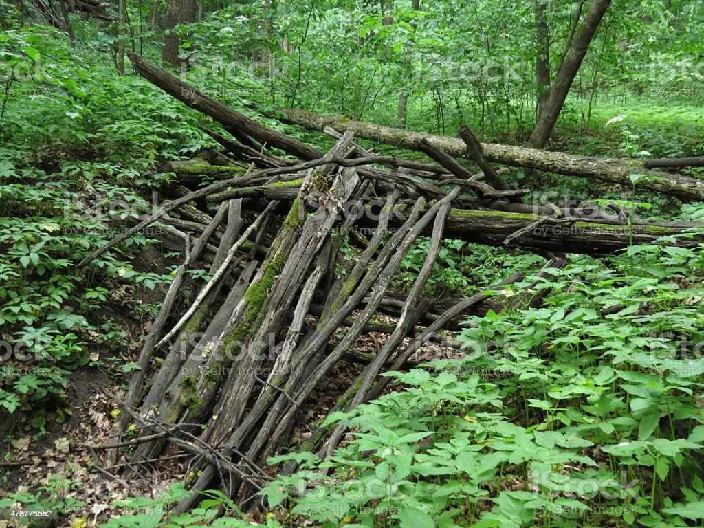 hut made of branches stock photo
