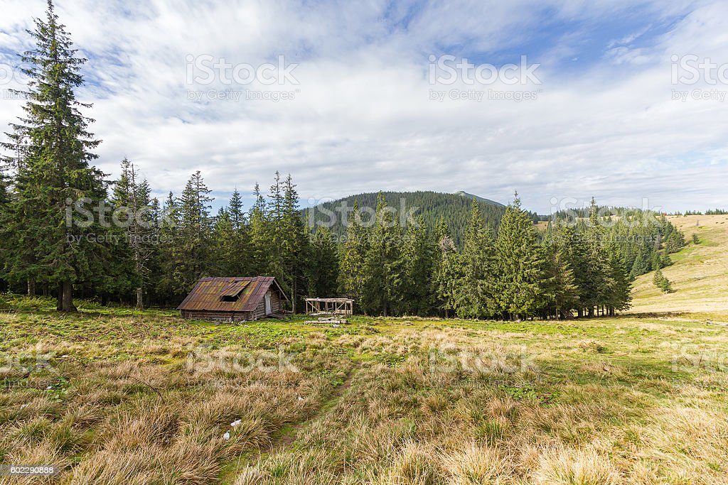 Hut of the shepherd on the mountain plain. Carpathians stock photo