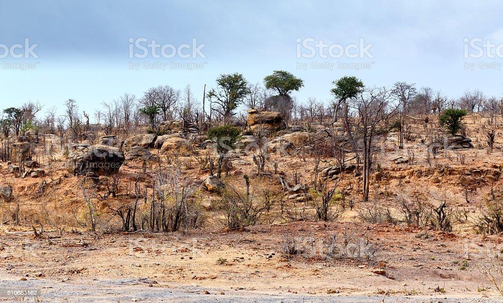 hwankee national park landscape stock photo