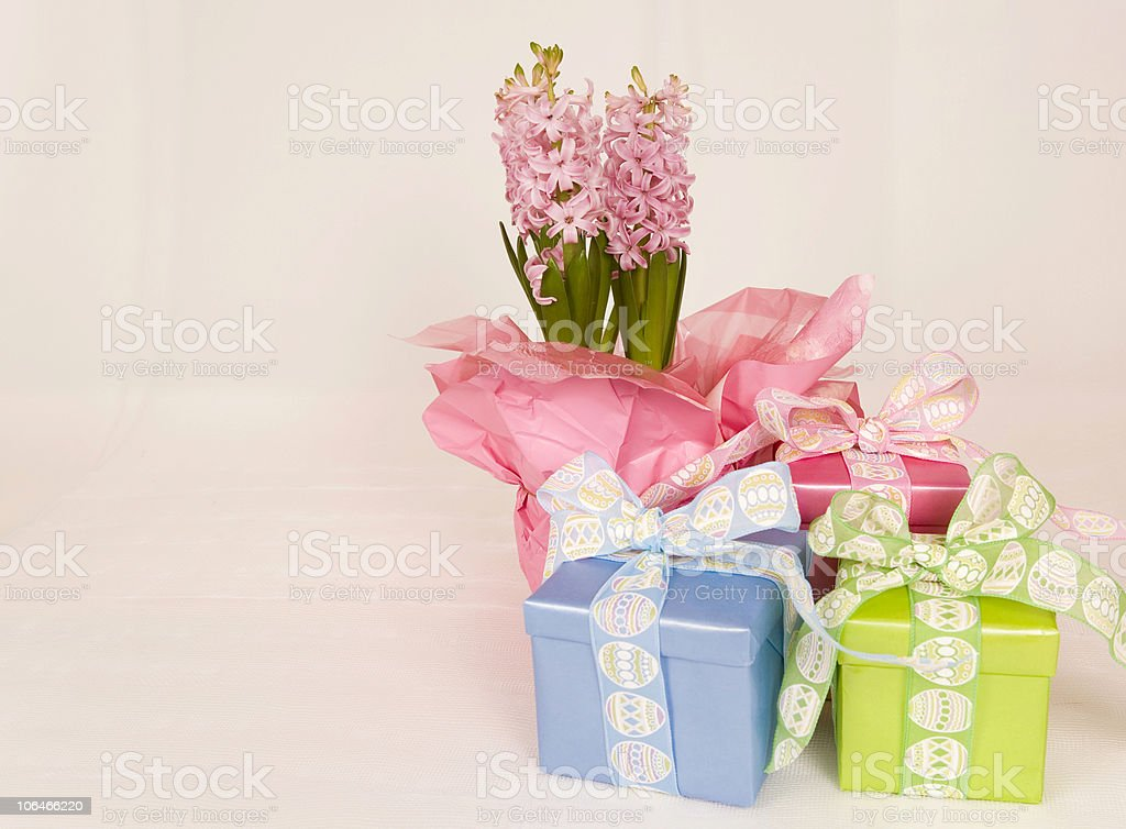 Hyacinth and Easter Gifts stock photo