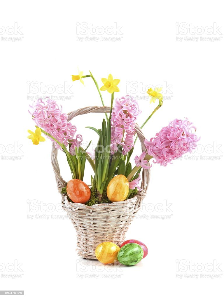 Hyacinth and narcissus with easter eggs royalty-free stock photo