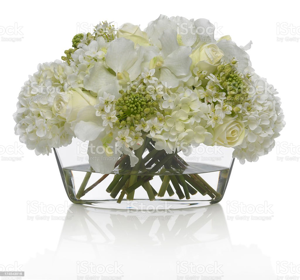 Hydrangea and Orchid bouquet on a white background stock photo