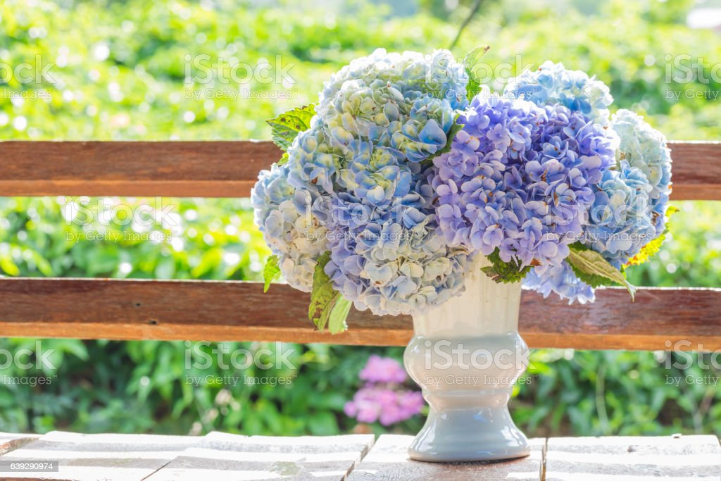 hydrangea flowers in white vase top on old wooden stock photo
