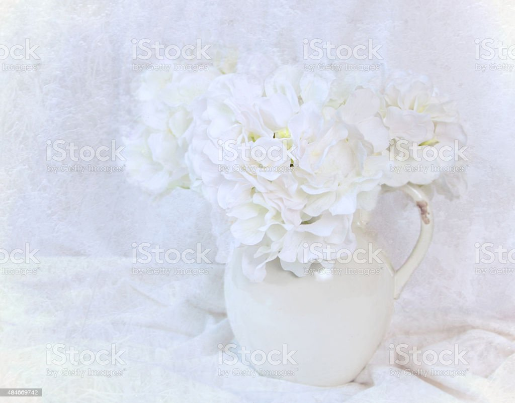 Hydrangeas in a pottery pitcher with white draped cloth stock photo