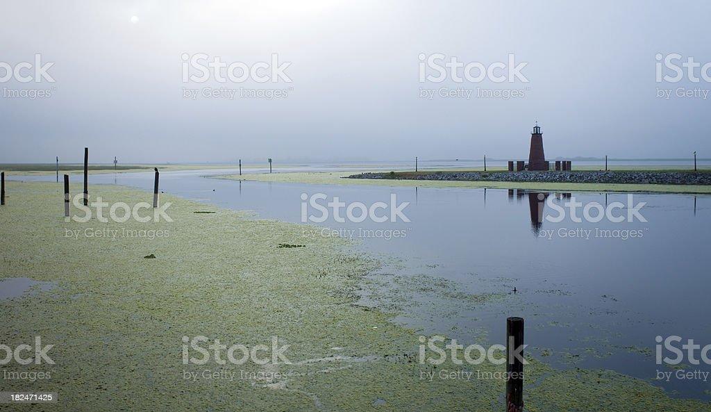 Hydrilla Invasion in Lake Tohopekaliga stock photo