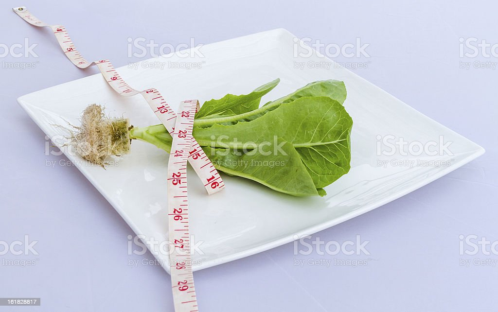 Hydroponic vegetable with measure tape on dish. royalty-free stock photo