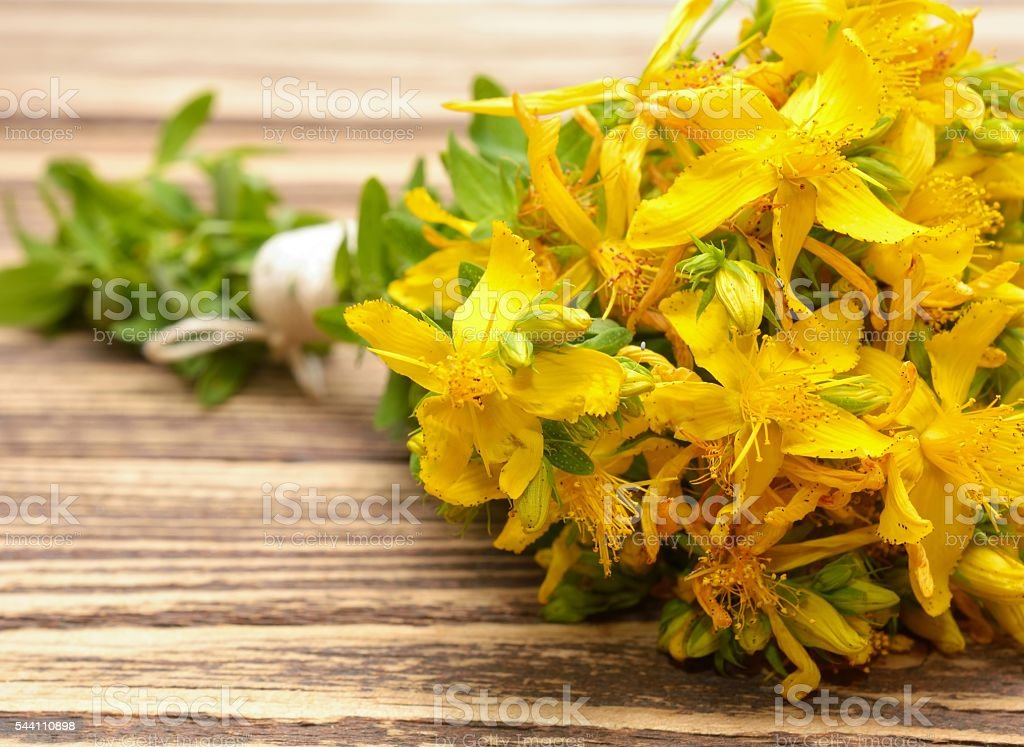 Hypericum flowers, Hypericum perforatum or St John's wort stock photo
