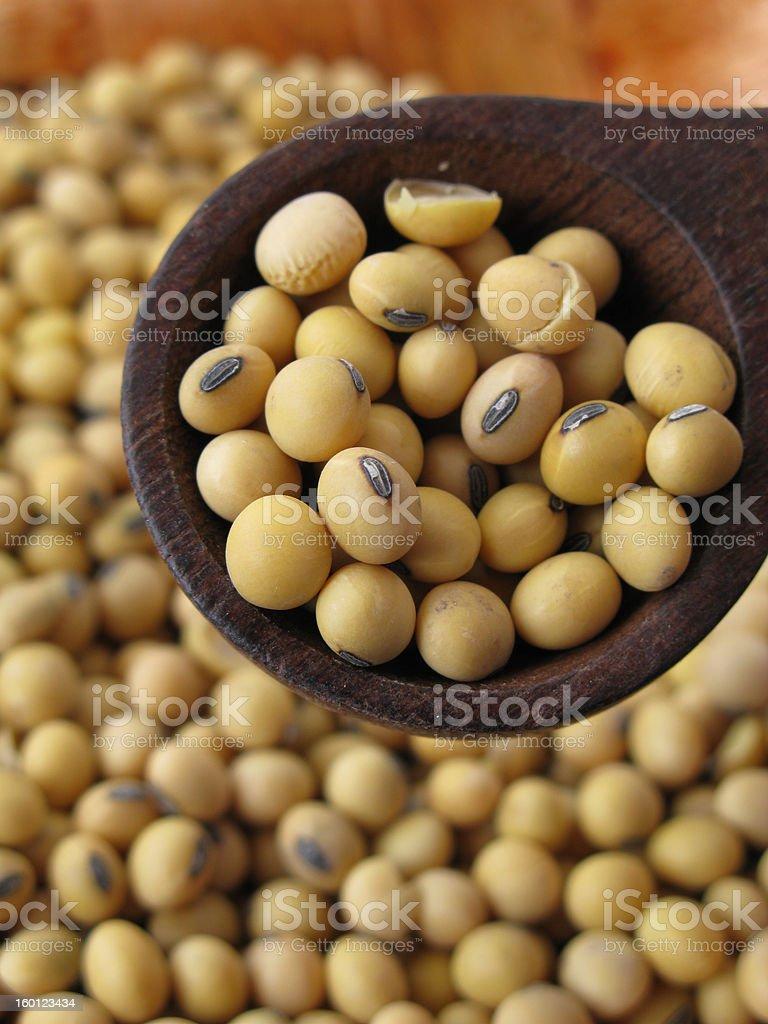 i love soybeans royalty-free stock photo