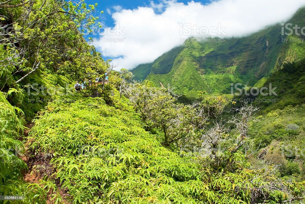 Iao Valley State Park on Maui Hawaii stock photo