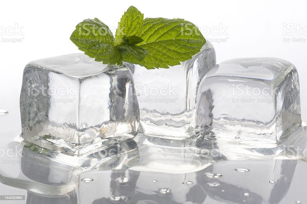 ice and mint royalty-free stock photo