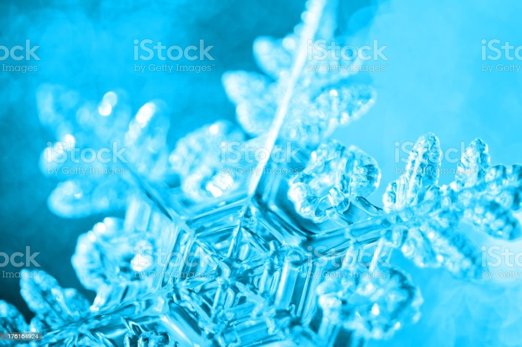 Ice Blue Snowflake stock photo