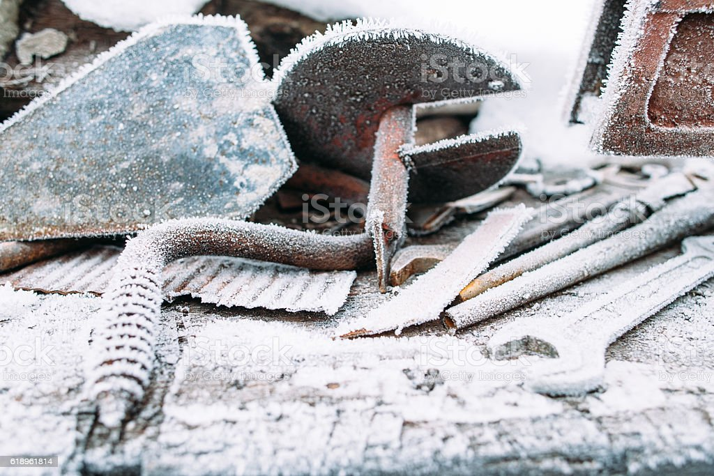 Ice boer outside with snow frost on it stock photo