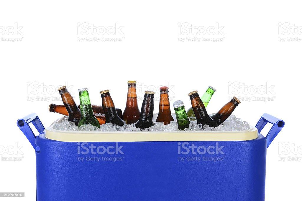 Ice Chest Full of Beer Bottles stock photo