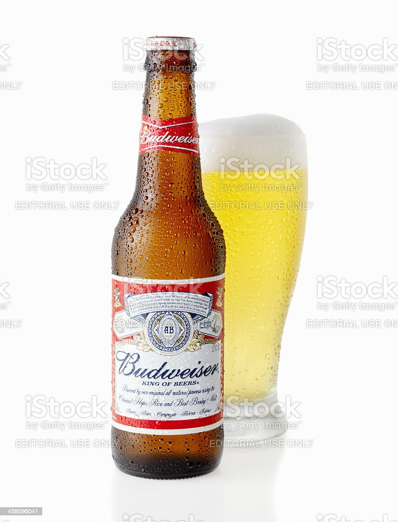 Ice Cold Bottle and Glass of Budweiser Beer stock photo