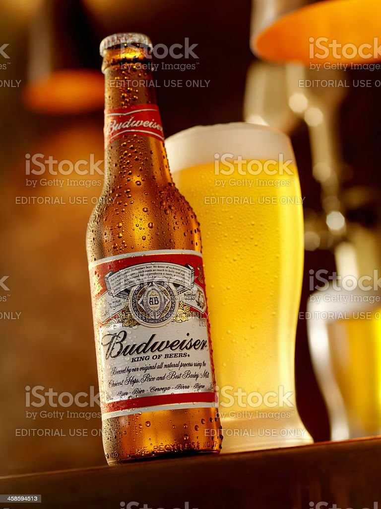 Ice Cold Bottle of Budweiser stock photo