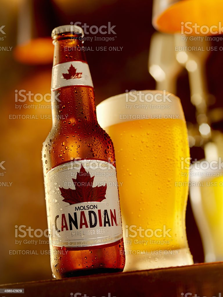 Ice Cold Bottle of Molson Canadian Beer royalty-free stock photo